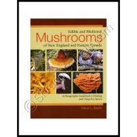 Edible and Medicinal Mushrooms of New England & Eastern Canada