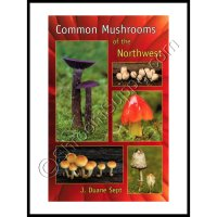 Common Mushroom of the Northwest